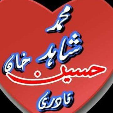 Muhammad Shahid Hussain Khan